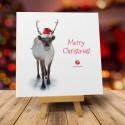 Firmowa kartka świąteczna POMOCNIK MIKOŁAJA z logiem