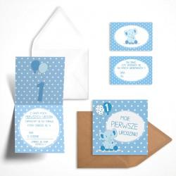 Pastelowe zaproszenia na roczek Borówkowy Słonik dla chłopca bez personalizacji